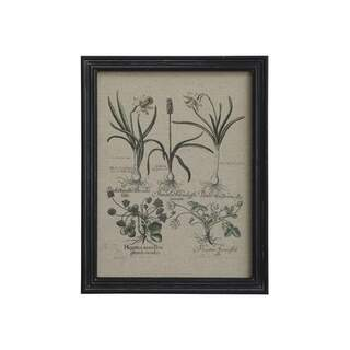 Picture w. floral print & black frame