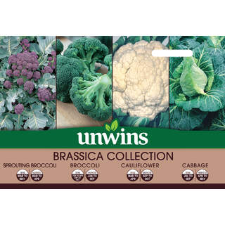 Brassica Collection 4 in 1