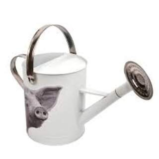 Watering can Farm Animal (pig) Colour: Pig