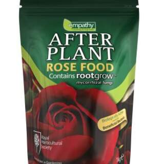 EMPATHY AFTERPLANT ROSE FD
