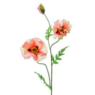Poppy spray x3 90cm peach