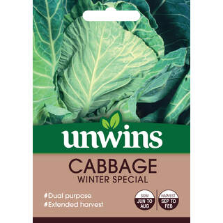 Cabbage (Spring Greens) Winter Special