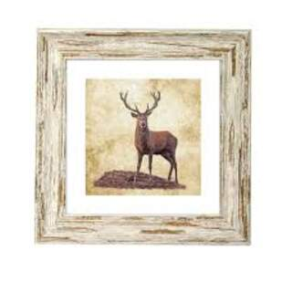 IRISH WILDLIFE STAG ART FRAME 9X 9