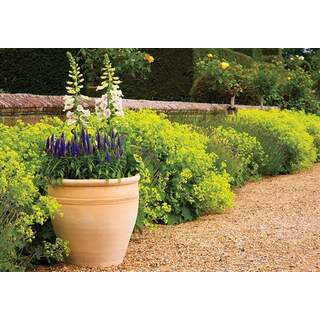 Himalaya Traditional Planter 36cm