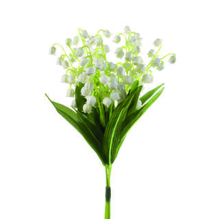 Lily of vally bundle x3 d15cm white